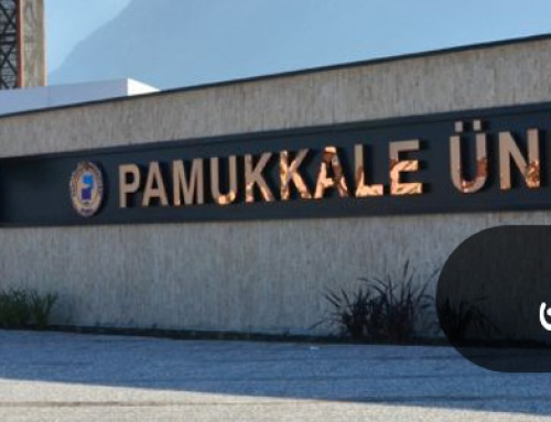 RESULTS ARE ISSUED BY  PAMUKKALE UNIVERSITY