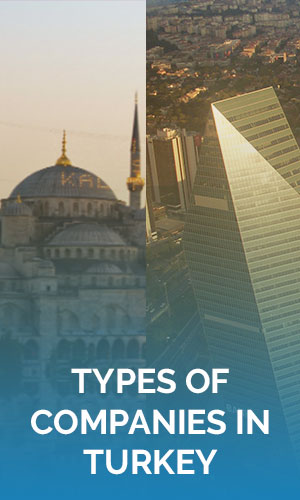 Types-of-Companies-in-Turkey