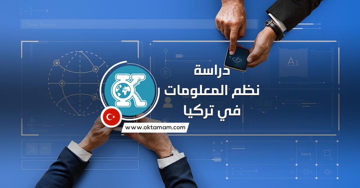 دراسة نظم المعلومات في تركيا