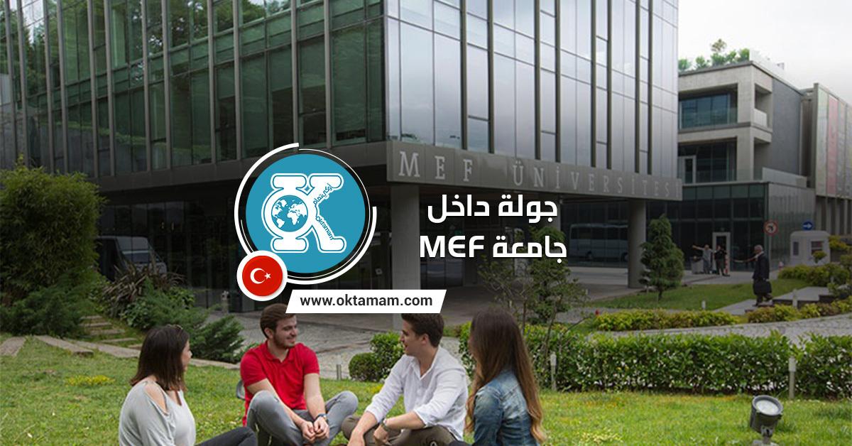 جامعة MEF